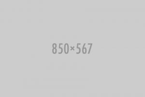 Opleidingen 850x567 300x200